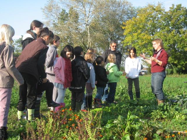 L'art au jardin : atelier d'automne